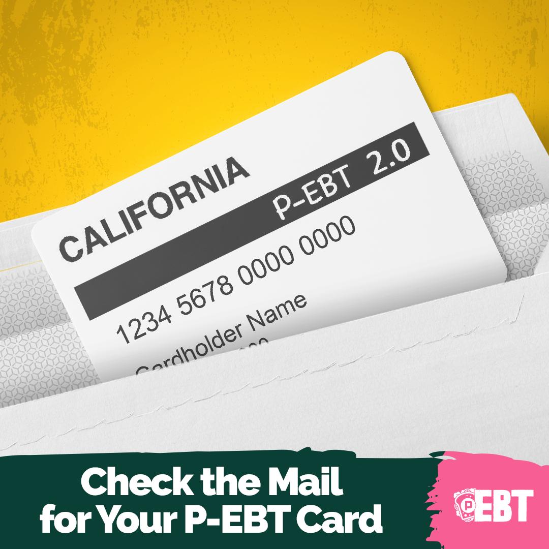 PEBT-P1-13.png