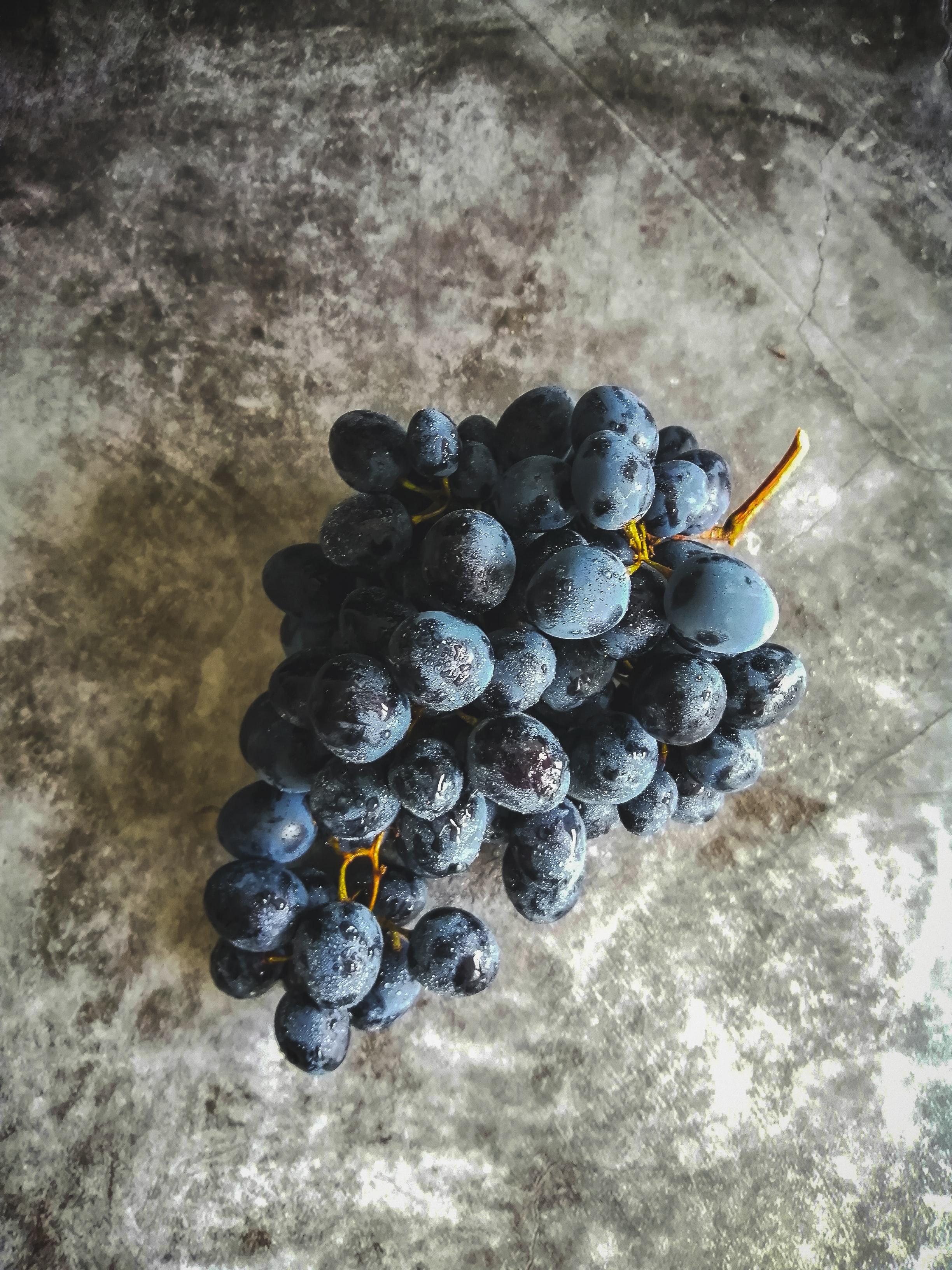 Grapes/tijana-drndarski-2HVmYCkrJfs-unsplash.jpg