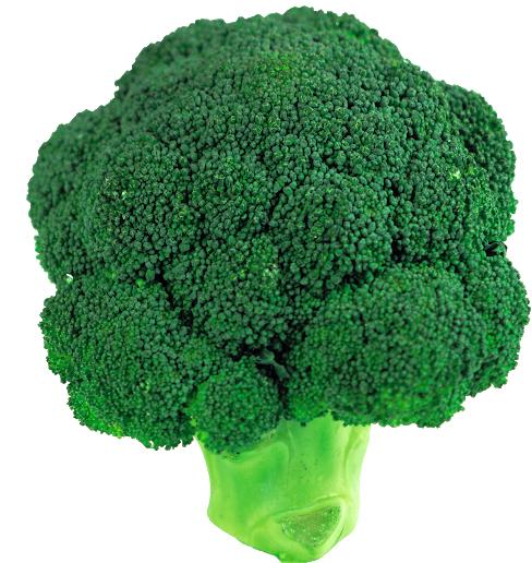 brocoli.PNG