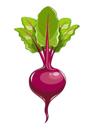 fresh-beet.jpg