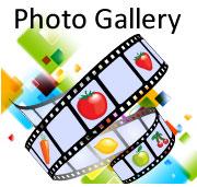 photogallery001.jpg