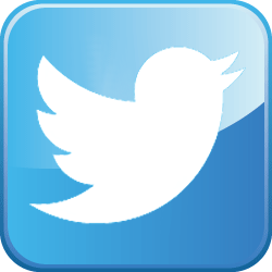 Twitter_bird.png